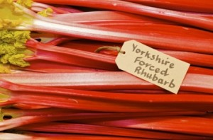 Graeme Pallister talks about Yorkshire Forced Rhubarb
