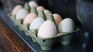 food-baking-shell-egg-close-up-egg-box-1183673-pxhere.com